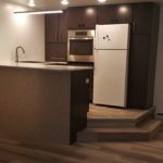 Small modern kitchen in mother-in-law suite