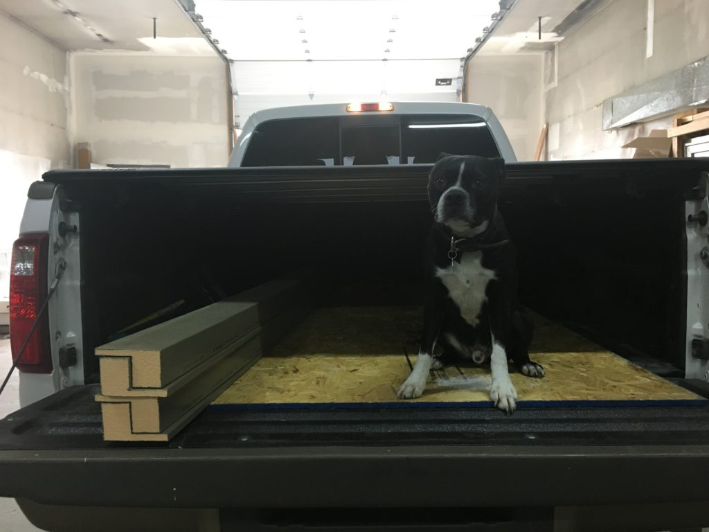 Boston terrier sitting in the bed of a truck with window bucking